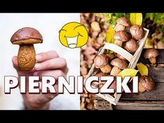 Dog Food Recipes, Cooking Recipes, Polish Recipes, Polish Food, Arabic Food, Biscotti, Truffles, Gingerbread, Sweet Tooth
