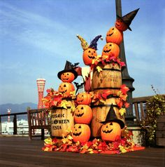 pumpkins on barrels