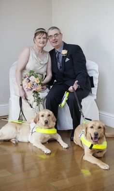 Last year we brought you the story of Claire Johnson and Mark Gaffey, a couple who met and fell in love thanks to their guide dogs Venice and Rodd. Over the weekend the blind couple married with Venice and Rodd serving as ring bearers.