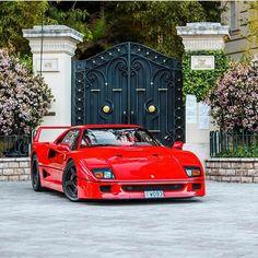 Ferrari F40, Lamborghini Gallardo, Maserati, Bugatti, Top Sports Cars, Top Cars, Sport Cars, Nissan Skyline, Paul Walker
