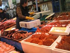 5 Selected Fishing Ports in Japan with Delicious Fresh Seafood Cuisine