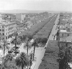 Tunis 1938