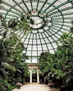 The Royal Greenhouses, Belgium. ELLE DECOR Goes to Brussels