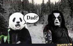#bandmemes #musicmemes #bandadda Yaaaasssss. #panda #forest #darkness #norway #occult #mysterious #abbath #immortal #immortalmemes #metal #metalhead #blackmetal #blackmetalgirl #metalmemes #metalmeme #extrememetal #corpsepaint #funny #memes #blacknwhite #blackandwhitephotography
