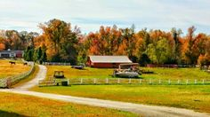 New Kent County during the fall