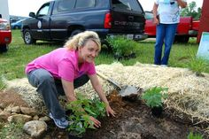 Rain garden workshops | UK College of Agriculture News