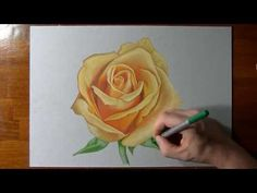 How to Draw a Rose with Colored Pencils - YouTube