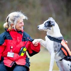 A SEARCH dog who helped to save the life of a missing girl has been given an award.  Winnie, who is one of Surrey's Lowland Rescue search dogs, has been awarded a PDSA commendation for devotion to duty.  Pictured: Winnie and handler Kathrin Tasker