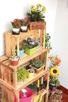 Mini jardín perfect para departamentos hecho con cajones, muy facíl y reciclado. Carrara S.L Desde 1980 satisfaciendo a nuestros clientes Indoor Garden, Indoor Plants, Home And Garden, Garden Kids, Cactus E Suculentas, Wooden Crates, Beautiful Gardens, House Plants, Planting Flowers