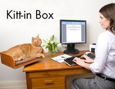 Great way to let the kitty be close to you but not walk across your desk or keyboard  Kitt-in Box