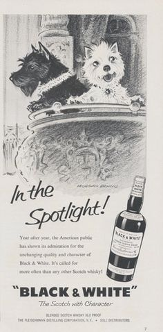 1950s Black & White Scotch Whisky Ad In the by AdVintageCom