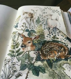 An Imagination That Looks Great On Paper: The Creative Mind Of Lily Seika Jones - Illustration and Art Education Kunst Inspo, Art Inspo, Watercolor Art, Watercolor Flowers, Arte Sketchbook, Art And Illustration, Nature Journal, Sketchbook Inspiration, Sketchbook Ideas