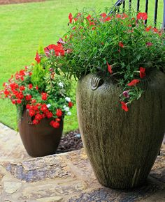 1000 images about crazy over container gardening on pinterest container garden container - Growing petunias pots balconies porches ...
