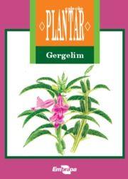 A cultura do gergilim - EMBRAPA Manual de plantio em PDF