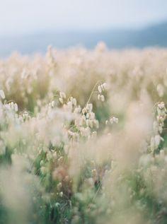 Romantic Beach Bridal Inspiration | Julie Kay Kelly | Erich McVey Workshop | Bridal Musings Wedding Blog 35