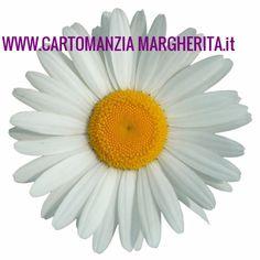 899 11 90 46 CARTOMANZIA MARGHERITA 5172301- ( annunci MI)   Inserzionigratis.com