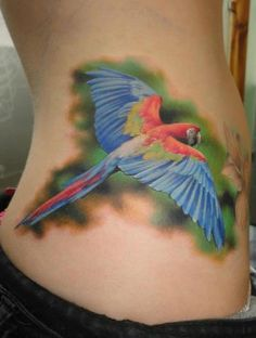 realistic parrot tattoo..amazing work!