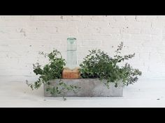 HomeMade Modern EP49 Self Watering Concrete Planter