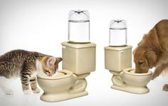 .. http www coolpetproducts com pet products toilet bowl pet waterer html