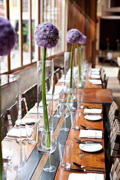 allium centerpieces - love allium because I think of Dr. Seuss every time I see one.