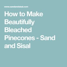 How to Make Beautifully Bleached Pinecones - Sand and Sisal