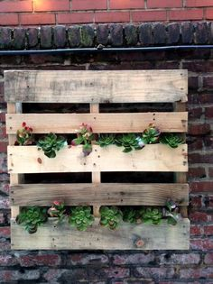 Pallet Succulent Wall Planter - 50+ DIY Pallet Ideas That Can Improve Your Home…
