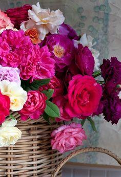 basket of vibrant blooms