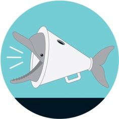 """Dolphins """"Shout"""" to Be Heard over Boat Noise - Scientific American Noise Pollution, Scientific American, Animal Welfare, Science And Technology, Dolphins, Underwater, Boat, Alters, Whales"""