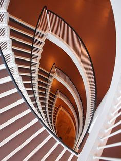 """Vulva shaped staircase ~scandinaviancollectors: """" AARNE ERVI, Staircase detail from the Helsinki University building Porthania, Helsinki, Finland, completed / LiveJournal """" Round Stairs, Stairs And Staircase, Interior Staircase, Take The Stairs, Modern Staircase, Staircase Design, Spiral Staircases, Amazing Architecture, Interior Architecture"""