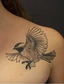 chickadee tattoo - smaller, and on my shoulder blade Scary Tattoos, Cool Tattoos, Bird Tattoos, Tatoos, Calf Tattoo, I Tattoo, Finch Tattoo, Chickadee Tattoo, Graphite