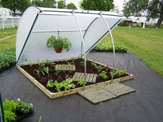 Keder Insulated Coldframe