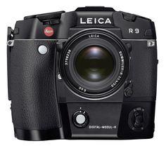 Leica R9 + Digital Modul R + Summilux-R 50mm f/1.4