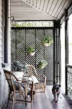 2. A lattice screen provides dappled light, privacy and the perfect foundation to attach vertical garden pots.