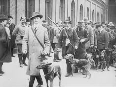 German Red Cross Dogs/ Airedale Terrier, leaving Berlin for the Front. c. 1914