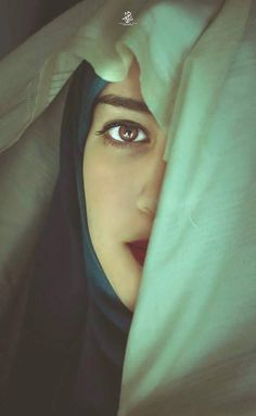 Arabian Nights Aparate