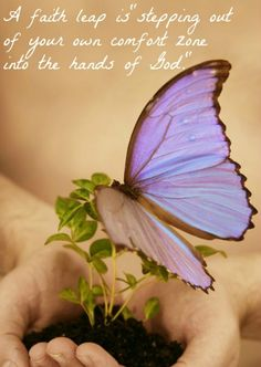 Do You Need to Take a Faith Leap? - The Humbled Homemaker