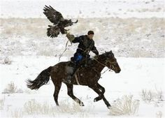Kazakhs Chase History With Ancient Eagle Hunting Photo: Reuters - Daily Good Pin Mongolia, Eagle Hunting, Hunting Gear, A Discovery Of Witches, Birds Of Prey, Ancient Art, Beautiful Birds, Beautiful Horses, Character Inspiration