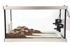 The secret to setting up a better river aquarium | Features | Practical Fishkeeping
