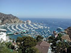 Avalon – Top 25 Things to Do in Catalina Island's Popular Destination