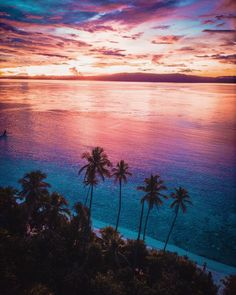 Raja Ampat sunset on the island of New Guinea, in West Papua province of Indonesia West Papua, Another Day In Paradise, Travel Insurance Policy, Perfect Place, Sunrise, Around The Worlds, Skyline, Adventure, City