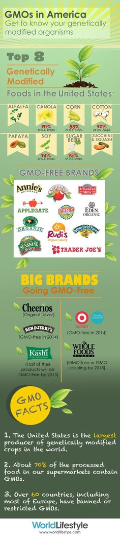 Get to know your GMOs in America -- the top 8 genetically modified foods + big brands going GMO-free