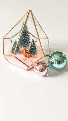 modern-christmas-terrarium-diy-5.jpg (1944×3456)
