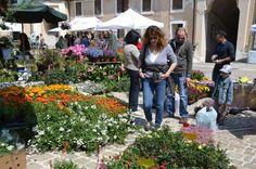 Ancona Flower Show alla Mole Vanvitelliana
