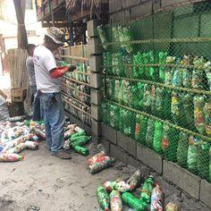 Aux Philippines, des surfeurs remplissent des bouteilles plastique vides de petits déchets pour les transformer en matériaux de construction à bas coût.