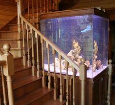 Акриловые аквариумы на заказ Stairs, Ocean, Home Decor, Stairways, Homemade Home Decor, Ladder, Decoration Home, Staircases, Stairway
