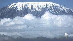 Pascal Daniel: Les Neiges du Kilimandjaro