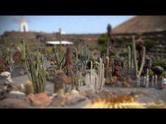 Lanzarote - Kanaren (Spanien) / Canaries (Spain) by Reisefernsehen.com - Reisevideo / travel video