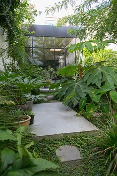 Ideas Zen Patio Garden Paths For 2019 Small Tropical Gardens, Small City Garden, Small Gardens, Outdoor Gardens, Garden Modern, Vertical Gardens, Contemporary Garden, Magic Garden, Dream Garden