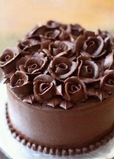 Choclate roses