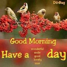 Good Morning Have A Wonderful Lovely Nice Day morning good morning morning…